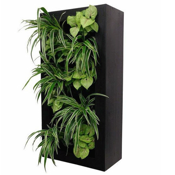 The Vertical Wall Garden   Tall Frame Is A Simple Planter With A Unique And  Modern Style. With Waterproof Paint, This Solid Painter Is Durable And Bold.