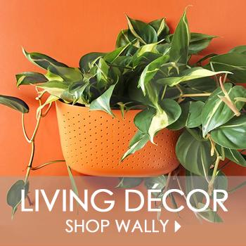 Shop Wally Living Wall Planters